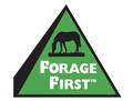 Forage First